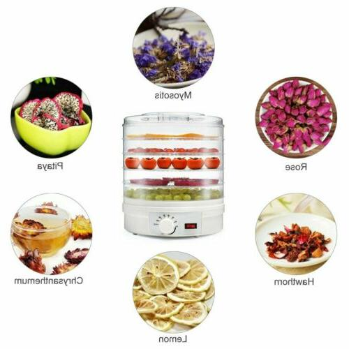 5 Food Fruit Home Drying