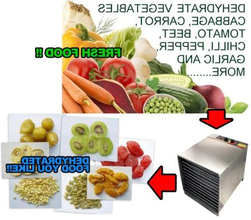 New 10 Tray Stainless Steel Food Fruit Jerky Dryer Blower