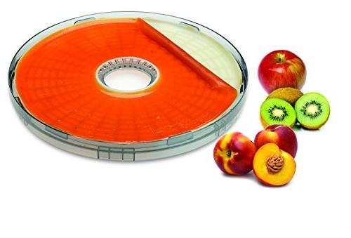 Salton DH1000F BPA Fruit For Food Dehydrator,