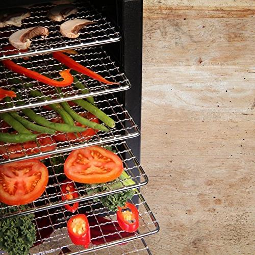 BioChef Arizona Food Dehydrator 6 BPA FREE Stainless - 1 Non Stick & x & Drier for Fruit, Jerky