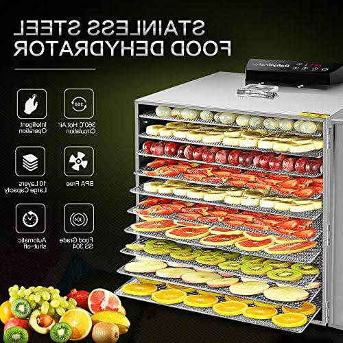 Commercial Stainless Dehydrator Food Jerky Fruit Trays Preserve Nutrition Professional Dryer, Digital Timer
