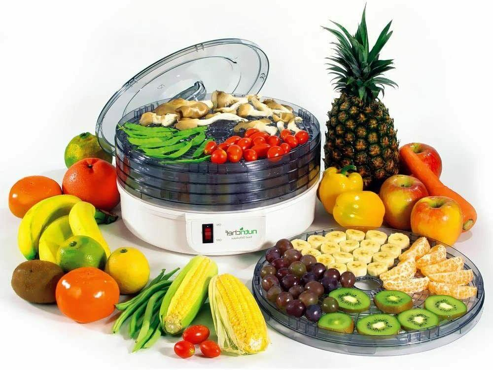 Electric Dehydrator 5 Stackable Trays Multi-Tier Kitch