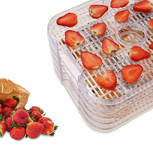 Food Dehydrator Machine Electricity timer/5 Display
