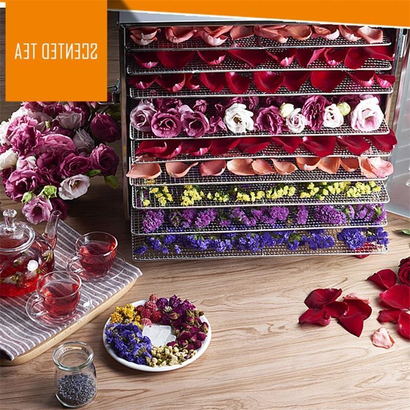 COSTWAY Professional Fruit Dryer Machine EP22605
